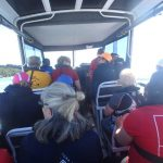 Water taxi ride for waka paddlers